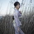 kikka kimono