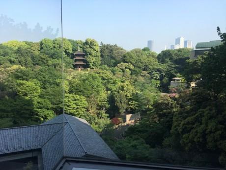 椿山荘でロケ撮影